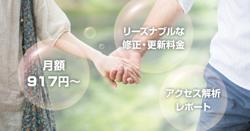 月額917円~ リーズナブルな修正・更新料金 アクセス解析レポート